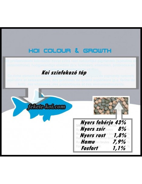 Hrana koi Colour & Growth 3mm  (2500ml)