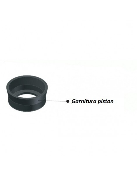 Garnitura piston 65mm (3420C2)