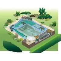 Pond, construcții lac de înot