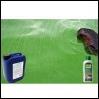 Solutii contra alge verzi